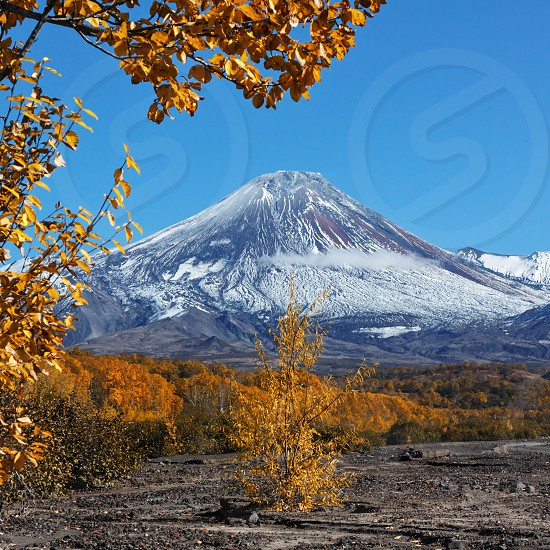 Beautiful autumn landscape of Kamchatka Peninsula: Dry River and colorful autumnal forest at foot of active Avachinsky Volcano (Avacha Volcano) on sunny day. Asia Russian Far East Kamchatka Region. photo