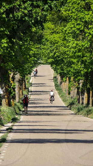 Camino de Santiago de Compostela Spain photo