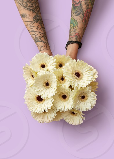 Fresh bouquet of white gerberas in female hands with a tattoo on a pink background. Flower spring concept. Mothers Day. Flat lay photo