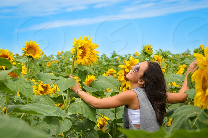 The smell and colors of spring! Shot in sunflower field during family road trip - just outside of Austin Texas photo