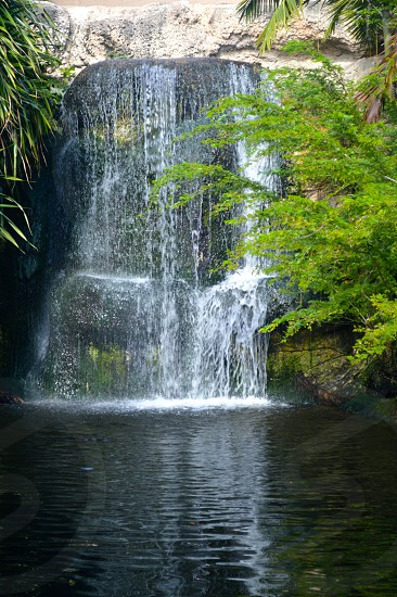 Waterfall in the background surrounded by trees. photo