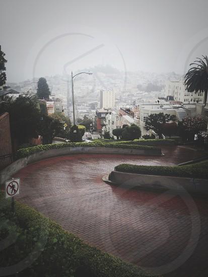 Lombard Street San Francisco CA photo