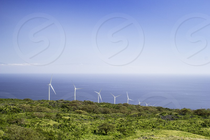 Wind power in lush landscape on the island of Maui in Hawaii.   photo