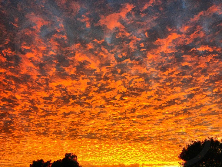 Fire in the Sky photo