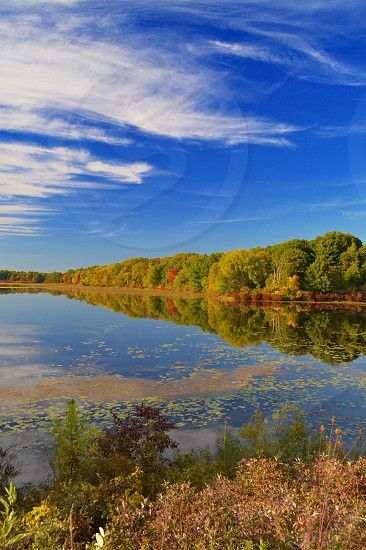 Fall day at the Metropark. Color change perfect reflection.  photo
