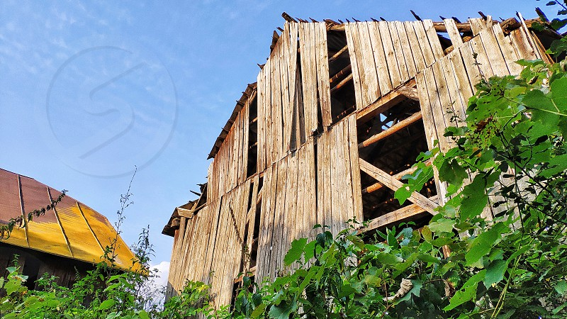 Discovering barns. photo
