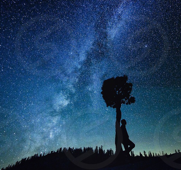 silhouette of person leaning on tree under starry night photo