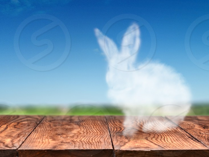 Cute Easter bunny made from a cloud on an old wooden table on a background of the sky and a green field. Easter concept for greeting card photo