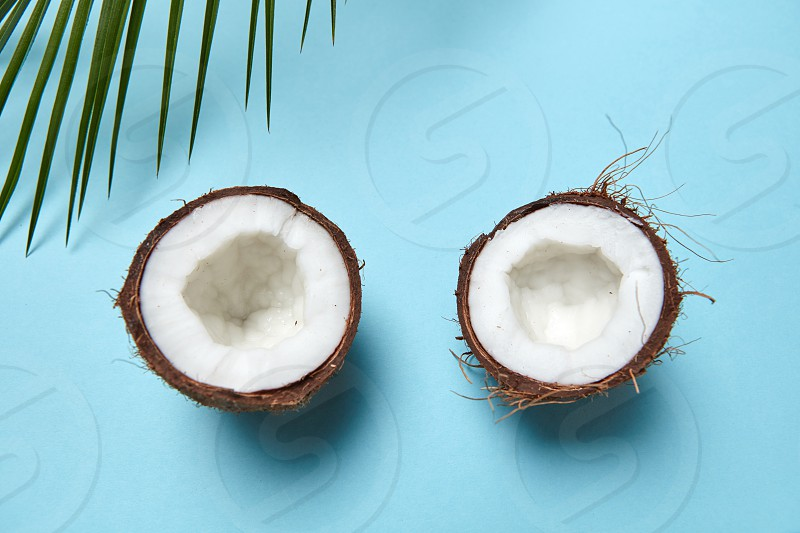 Chopped coconut and green palm branch on a blue background with space for text. Creative layout. Flat lay photo