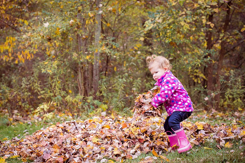 Toddler Girl Playing in Fall Leaves photo