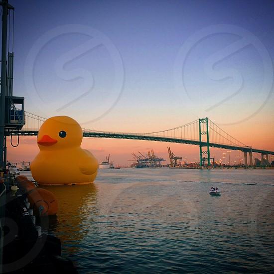 Rubber duck water reflection bridge harbor ocean photo