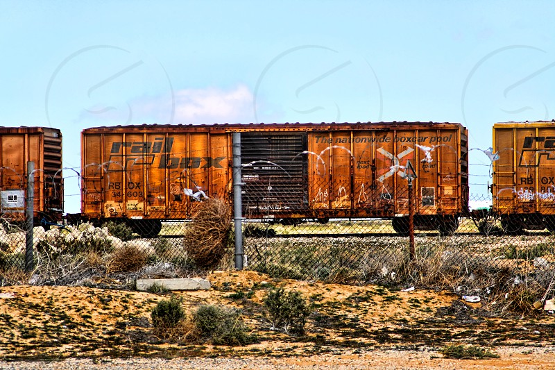 Old vintage freight cars in the desert photo