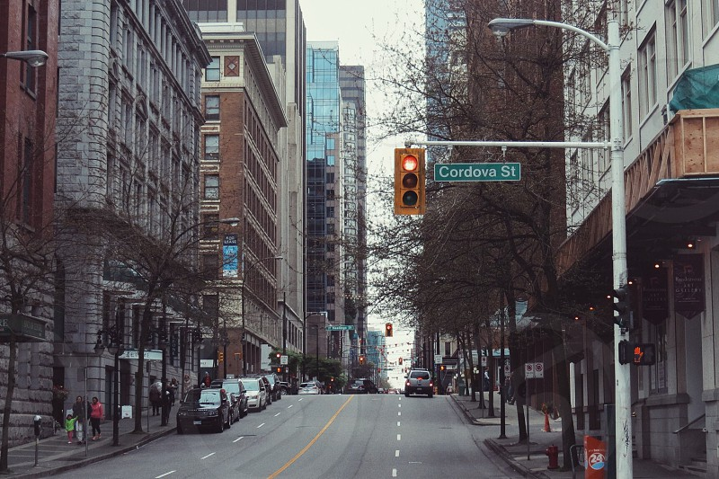 Downtown street stop lights red light path architects building fall winter  photo