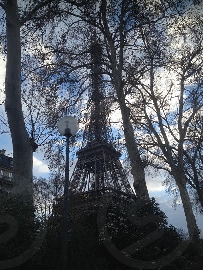 The Eiffel Tower Paris  photo