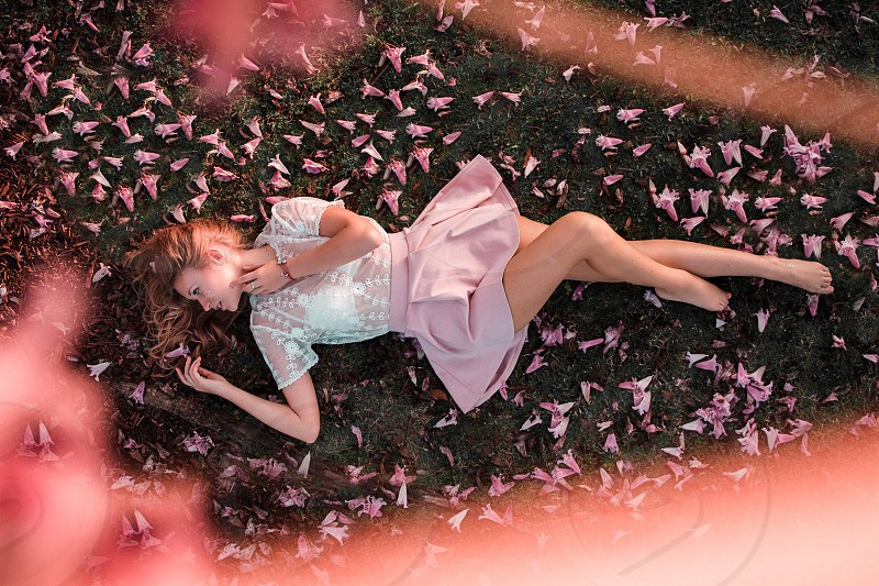 Girl laying in field of flowers underneath tree photo