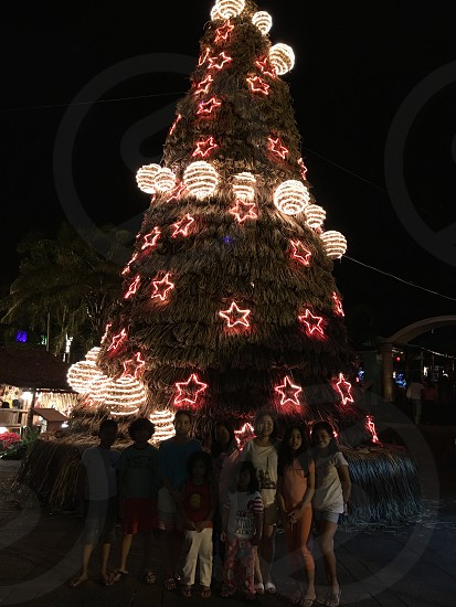 people standing near green tall christmas tree while taking a photo during nighttime photo