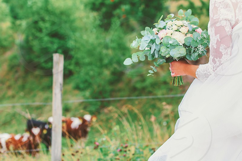To have and to hold wedding bouquet  flowers holding flowers bride nature outdoors farm photo