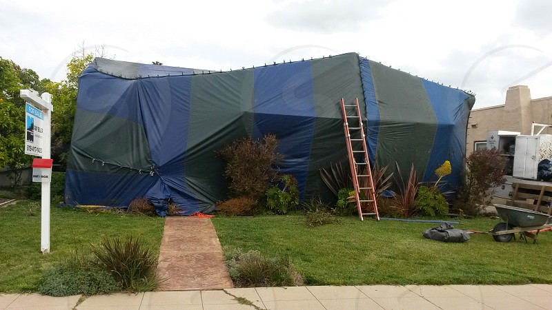 House fumigation tent San Diego photo