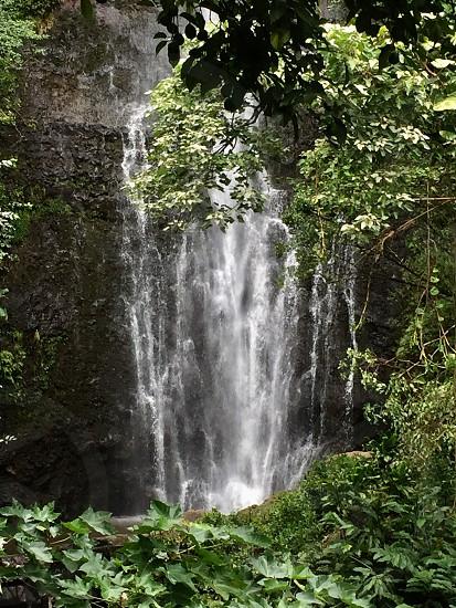 Maui Rains photo