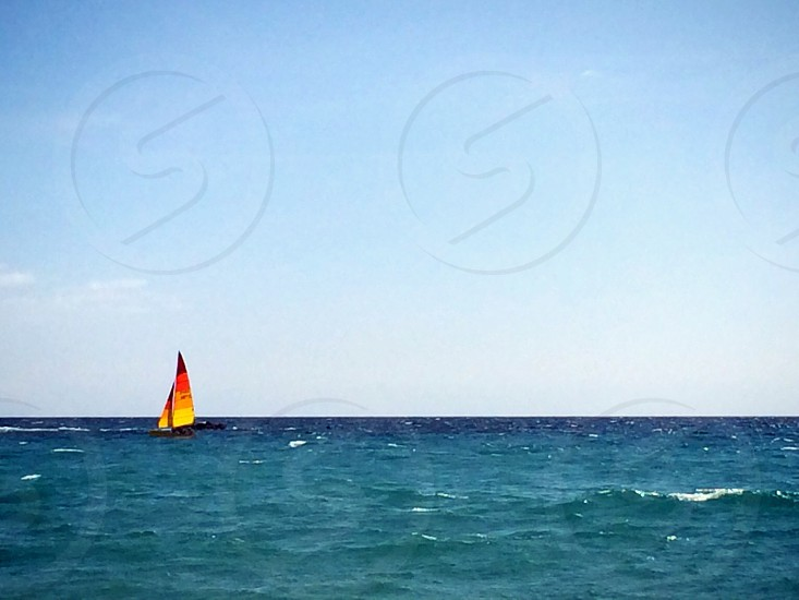 yellow black and brown sail boat photo