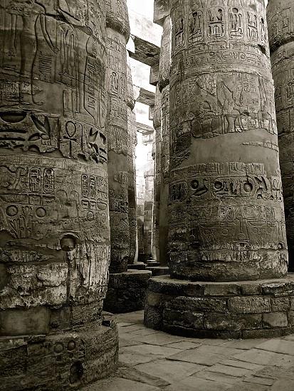 Egypt . Karnak . Luxor photo