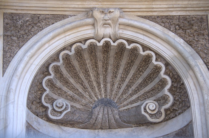 Shell Detail photo
