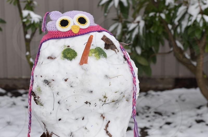 Snowman winter photo