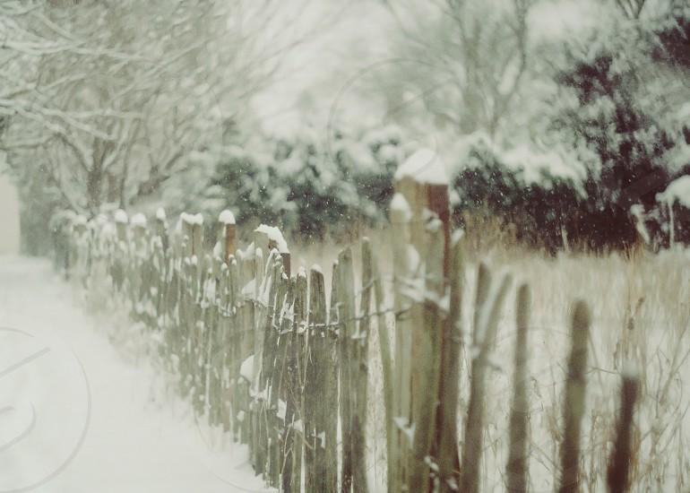 snow falling snow gate christmas winter photo