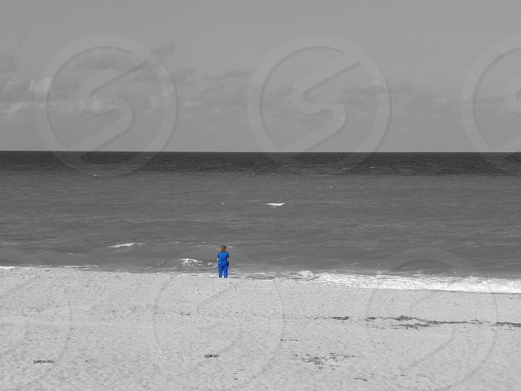 Blue nurse beach ocean blues melancholy waves water horizon  photo
