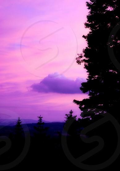 Pink Utah Sunset photo