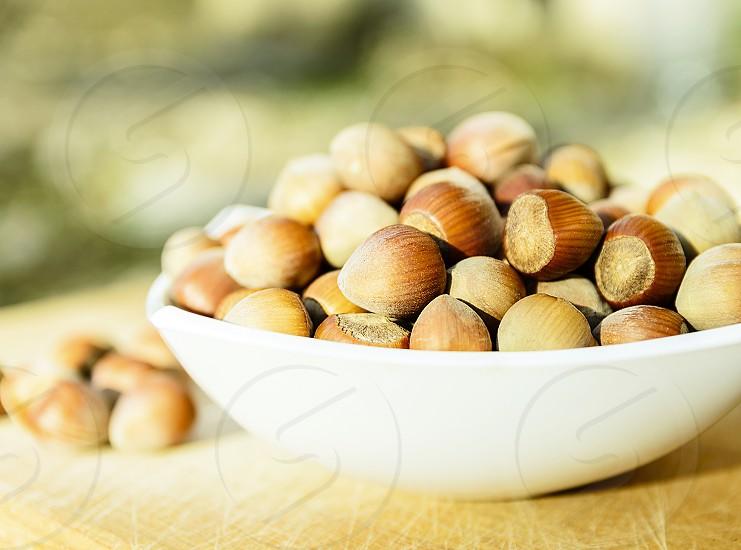Organic snack hazelnuts photo
