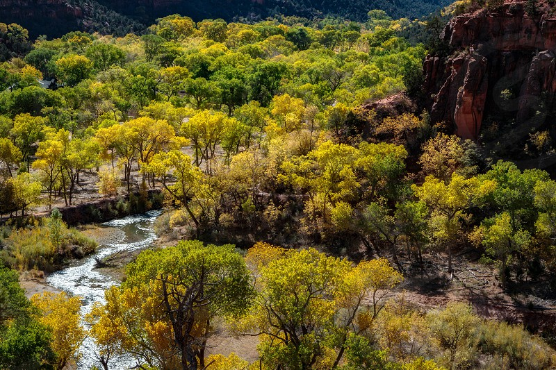Virgin River Valley in Zion National Park photo