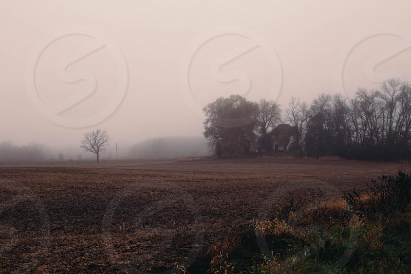 Fog-shrouded farmhouse in rural Wisconsin. photo