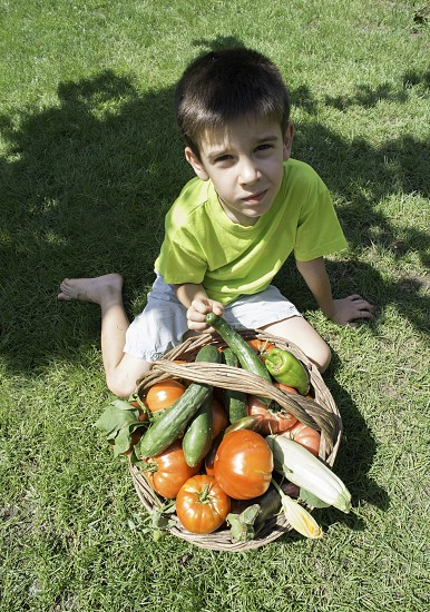 Child and basket with vegetables. Green meadow photo