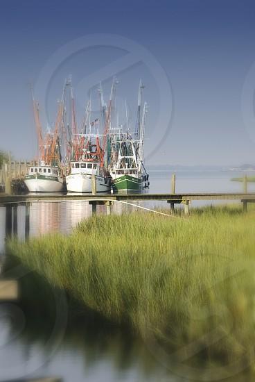 Shrimp Boats - Mount Pleasant SC photo