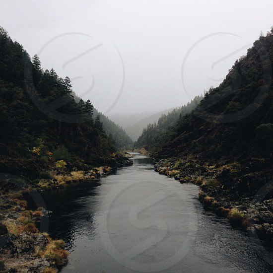 running water between green trees photo