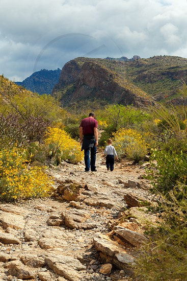 A father and his young son hike in the Arizona desert while the desert plants bloom around them. photo