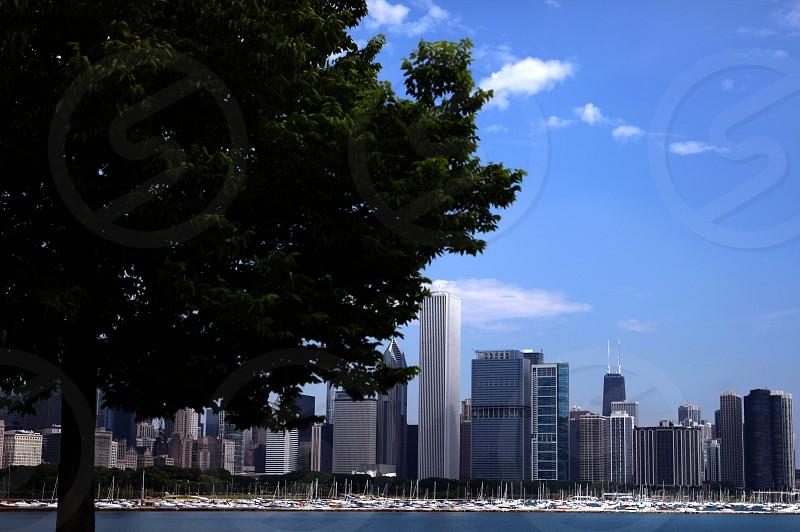 Chicago Lake Michigan Skyline photo
