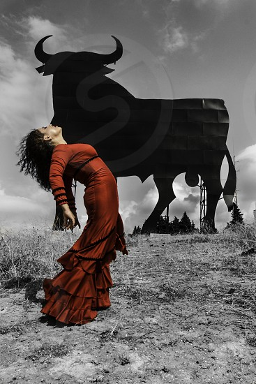 Flamenco dancer with Bull photo