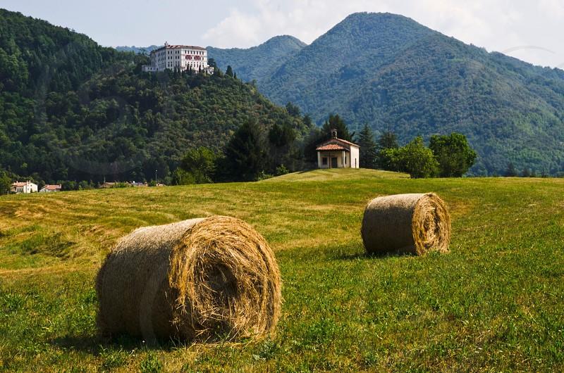hay rolls in grass field photo