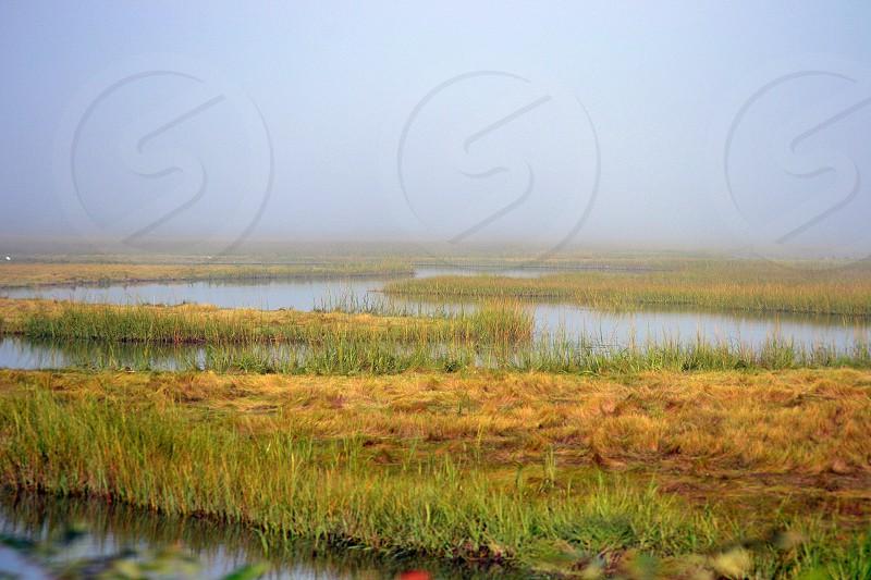 Marsh Water Streams Foggy Misty Boston area photo