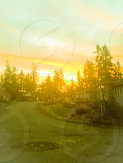 Here is a picture that I took when I was walking to the bus stop in Maple Valley Trees Sun Streets Houses Signs Sunsets photo