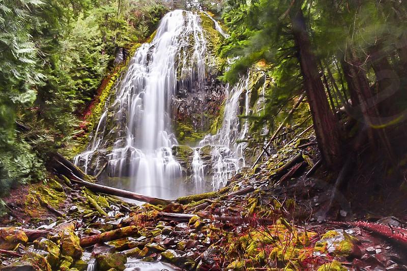 Oregon water waterfall photo