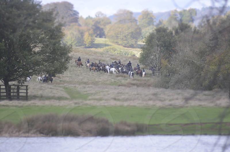 Petworth Park West Sussex UK The Hunt photo