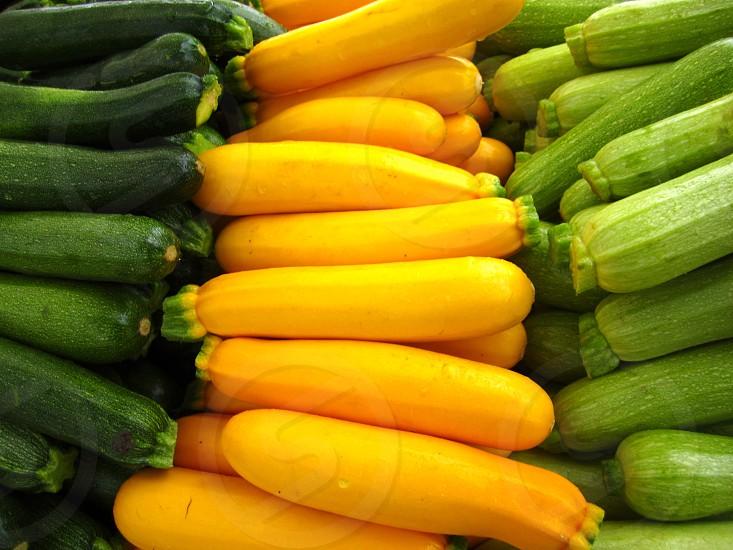 squash cucumbers photo