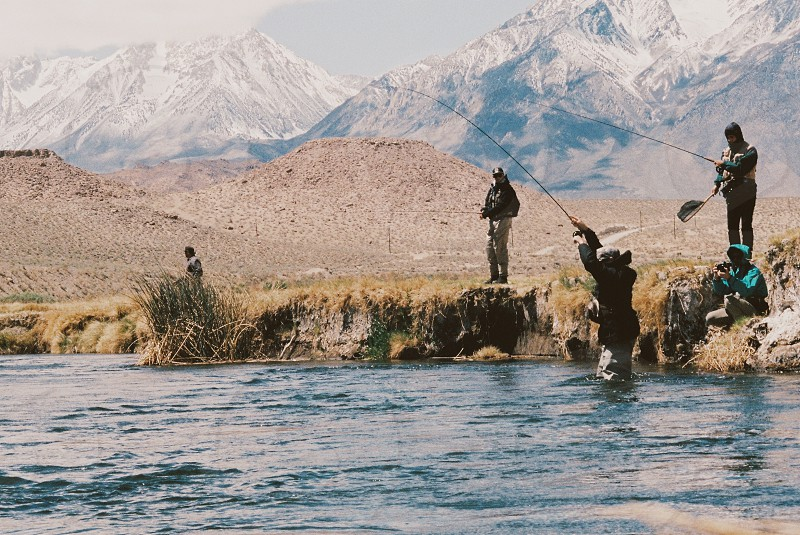 five person doing fishing photo