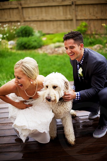 wedding laughing golden doodle wet kiss puppy kiss bride groom photo
