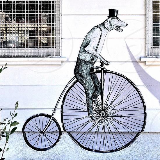 Mural- dog on bike photo
