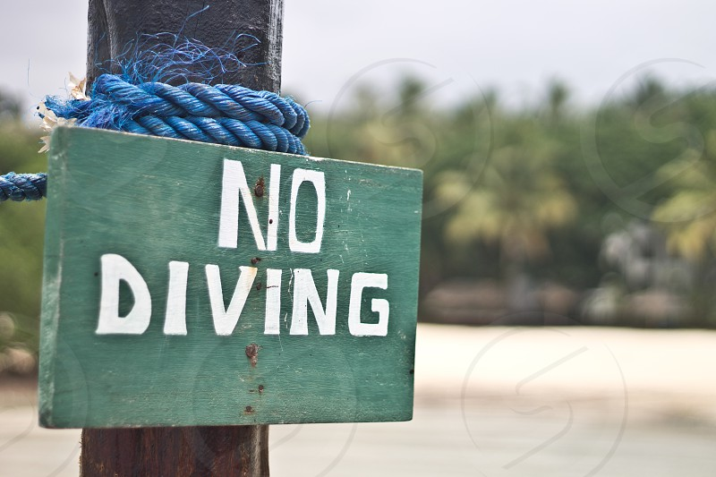 no diving beach water sign photo