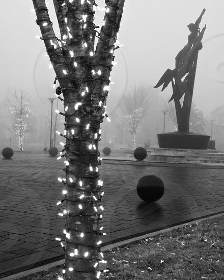 Christmas lights shining on a foggy morning photo